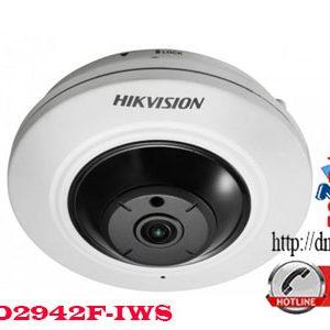 DS-2CD2942F-IWS